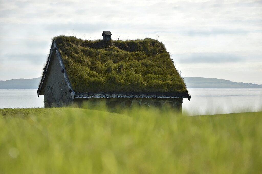 Dotace zelená střecha